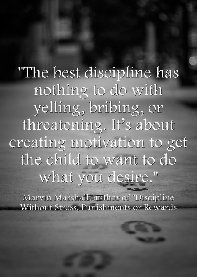 The-best-discipline-has