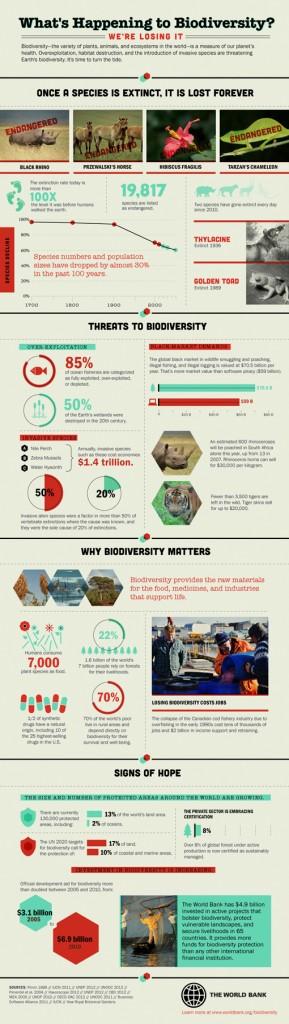 biodiversity-infographic-510x1801