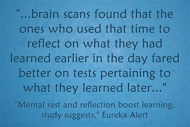 brain-scans-found-that