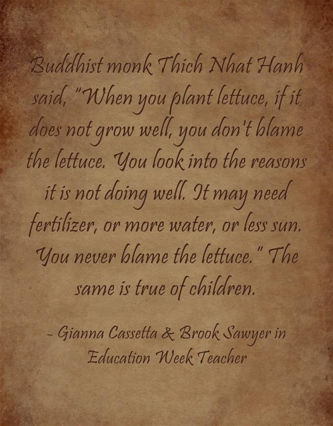 Buddhist-monk-Thich-Nhat