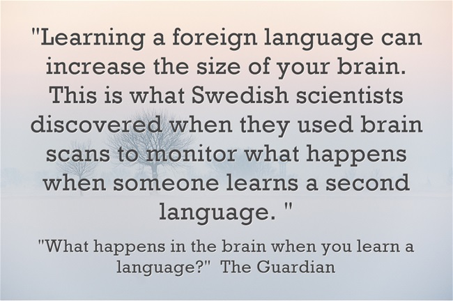 Learning-a-foreign