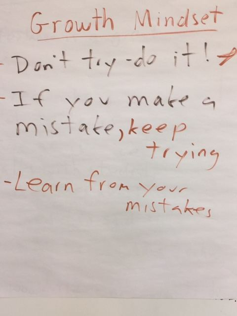 A Look Back: My Growth Mindset Lessons Usually Go Well, But What I Did Today Was The Best Yet (Student Hand-Outs Included)