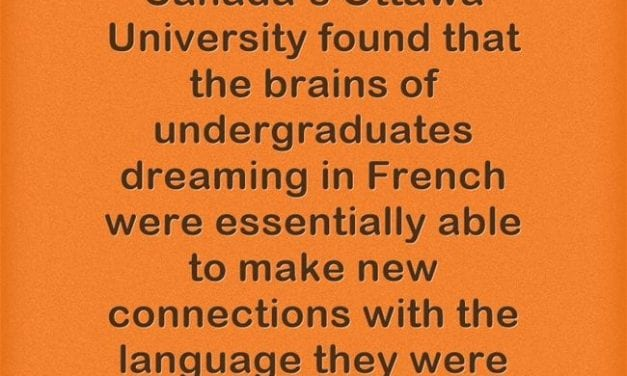 Research Finds That Sleep Helps Language Learning