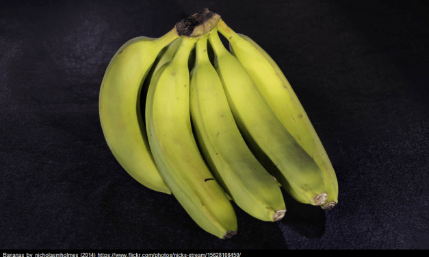 """A Look Back: """"The Banana Principle"""" Is A Useful Way To Talk About – & Implement – Change"""