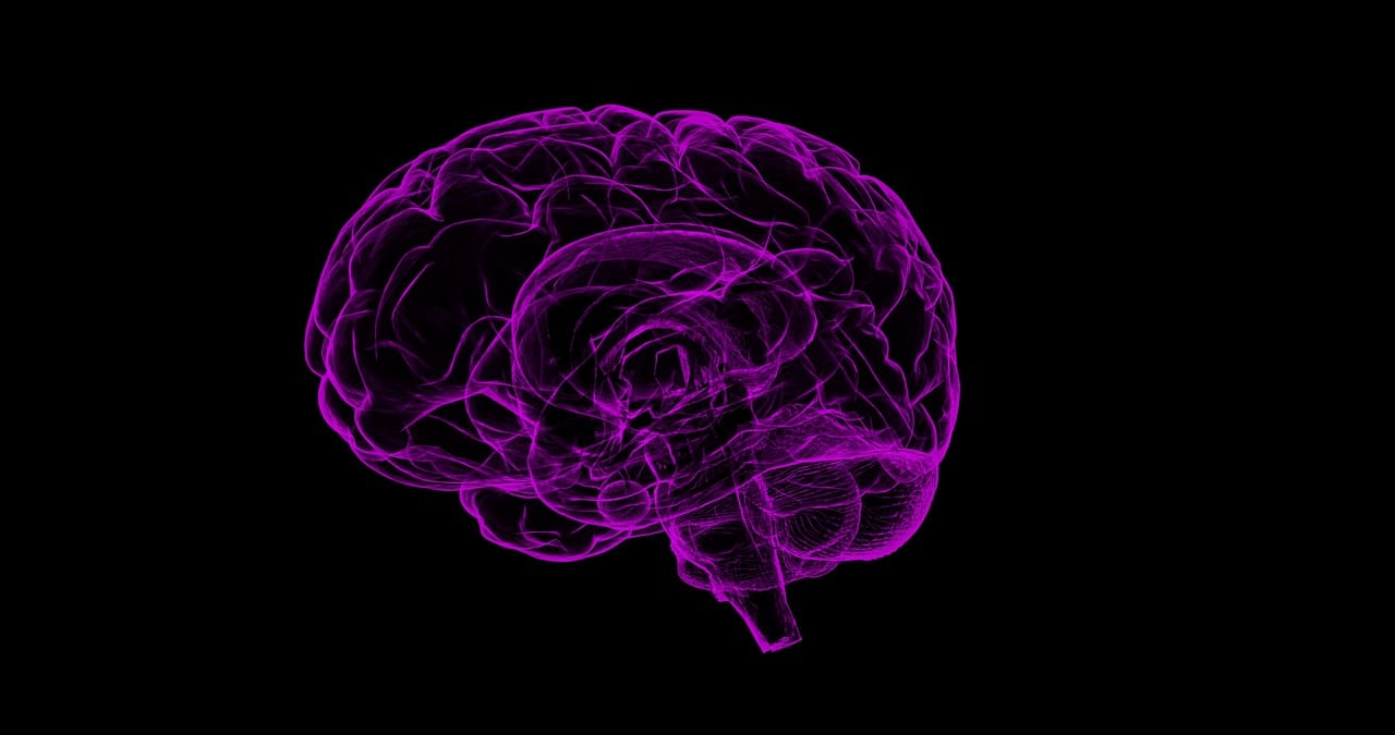 """A Look Back: """"How Students Can Grow Their Own Brains"""""""