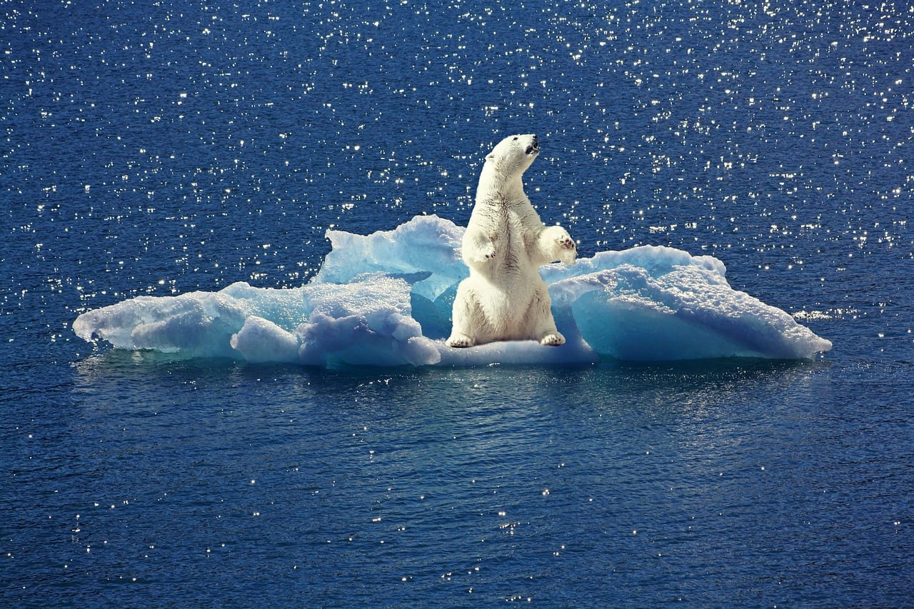 Teaching Resources On U.N. Report On Climate Change