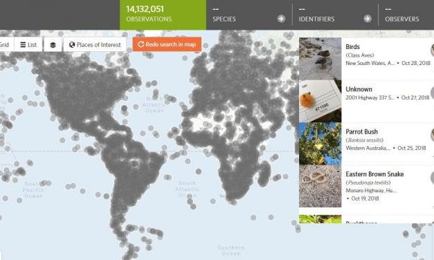 "How Could I Not Have Known About ""iNaturalist""? It's A Great Tool For Science & ELL Teachers!"