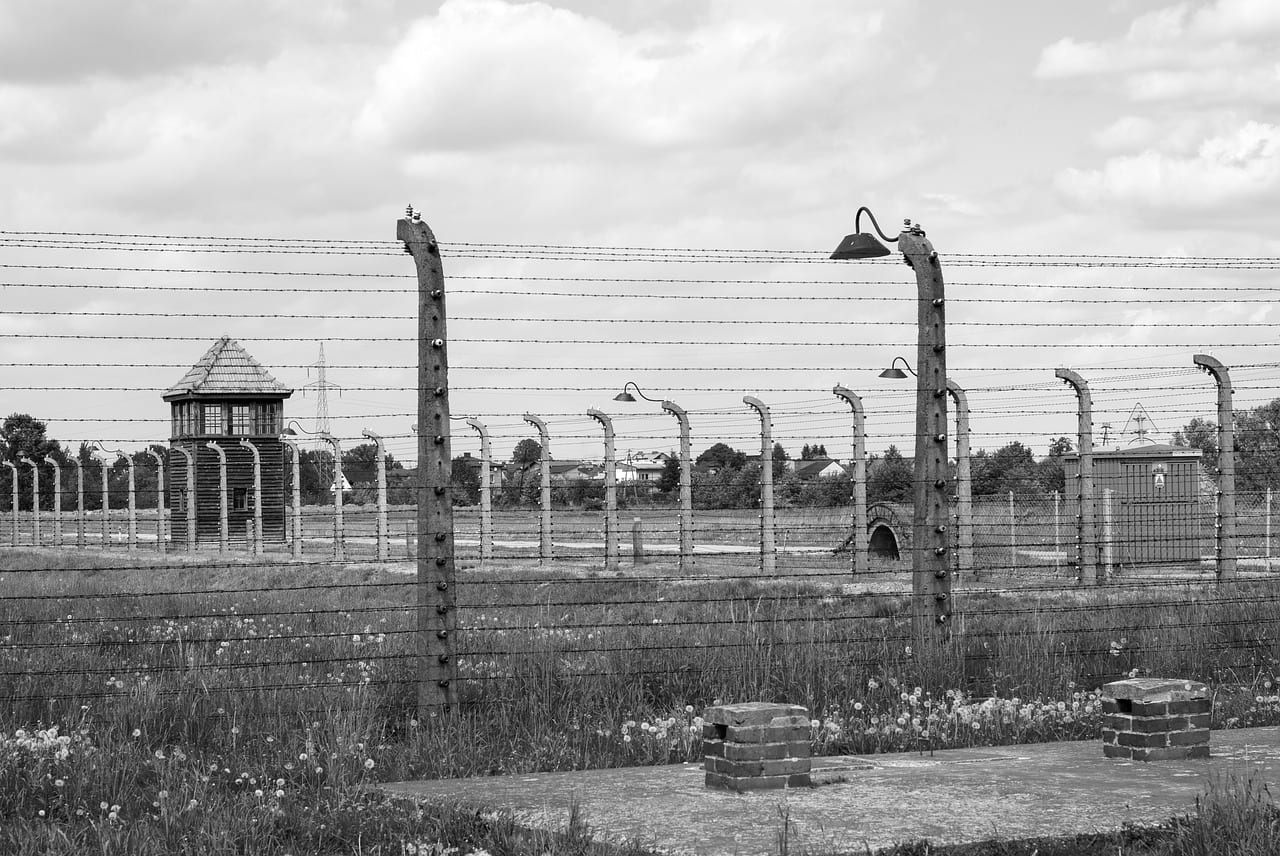 Excellent Resource On The Holocaust