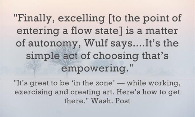 """Useful Article On What's Needed To Enter A State Of """"Flow"""""""