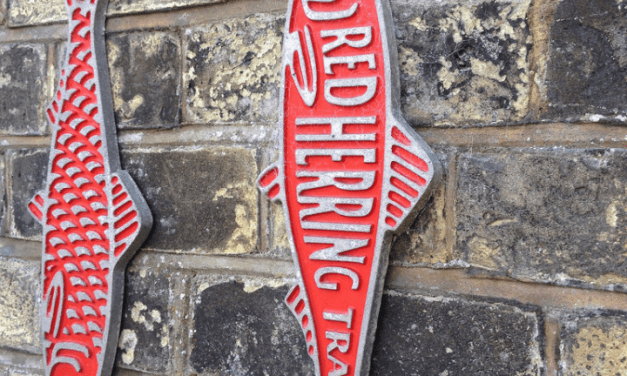 A Look Back: Deliberate Practice & Red Herrings