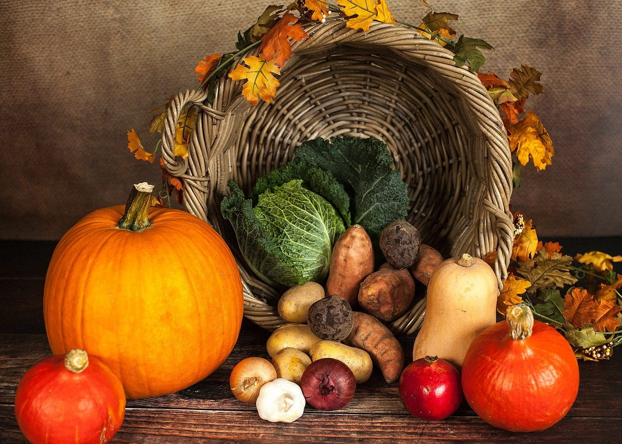 Important New Teaching Resources For Thanksgiving