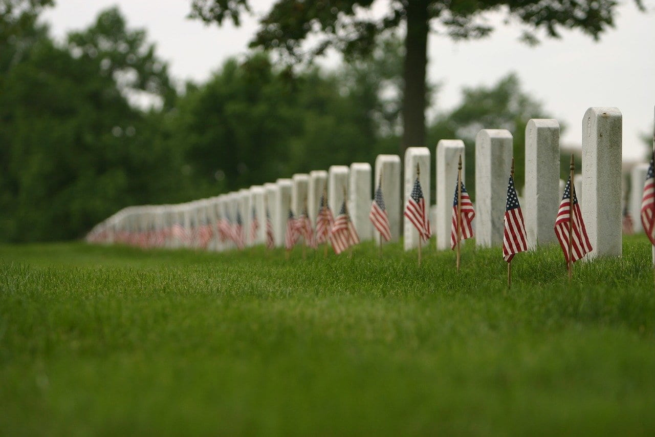 New Veteran's Day Resources