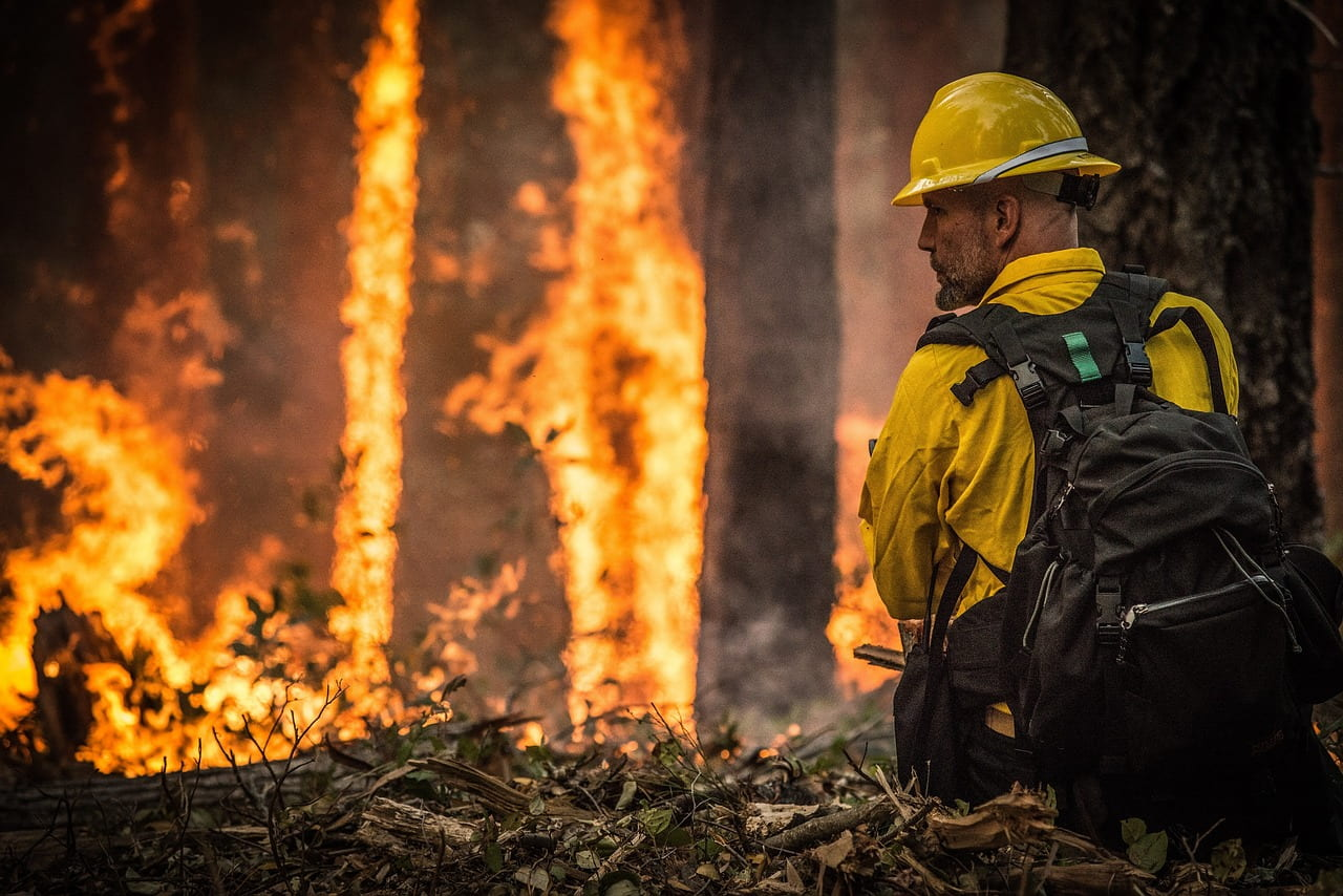 """New USA Today Video: """"Wildfires: The science inside the flames"""""""