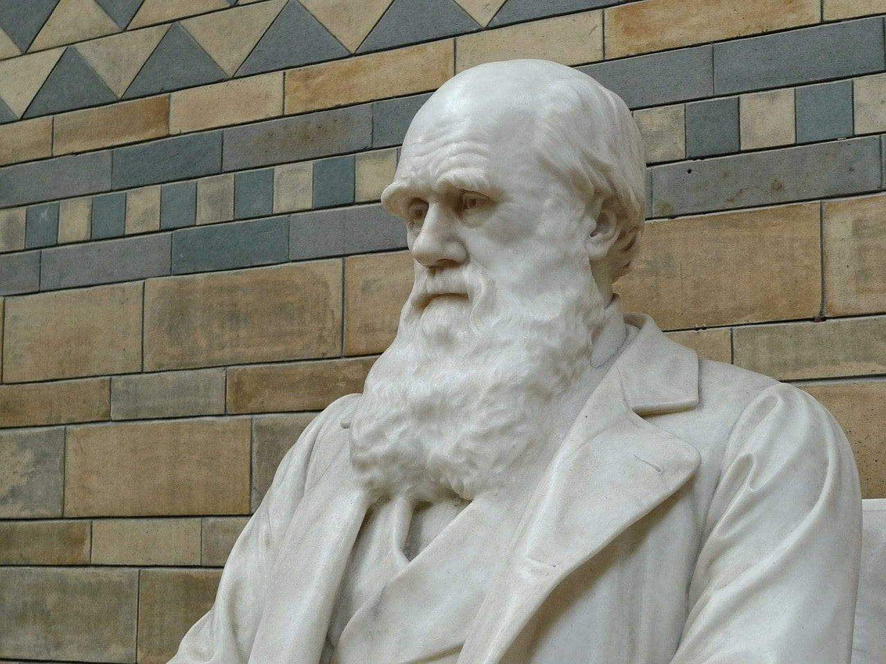 "New BBC Video: ""Theory of Evolution: How did Darwin come up with it?"""
