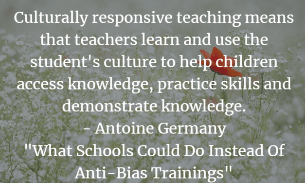 Guest Post: What Schools Could Do Instead Of Anti-Bias Trainings