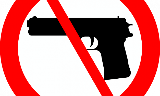 Everything You Wanted To Learn About Combating Gun Violence But Were Afraid To Ask