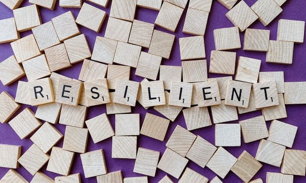 The Best Resources For Learning About The Concept Of Resilience