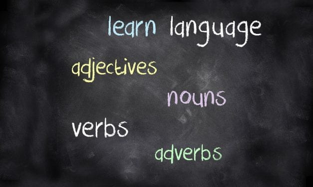 """Infographic Of The Week: """"English Language Learning in the U.S. Infographic"""""""